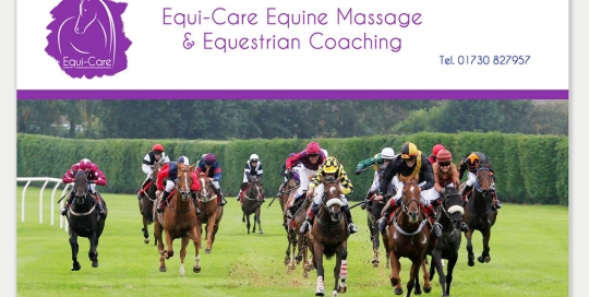 Equi-Care project, a small business website created by Red Leaf Design, Chichester, West Sussex
