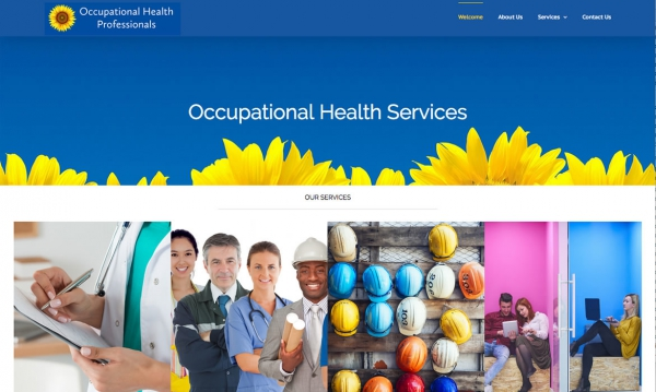 Occupational Health Professionals