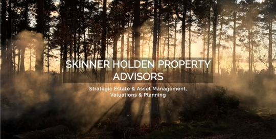Skinner Holden Property Advisors West Sussex - Strategic Estate & Asset Management, Valuations & Planning