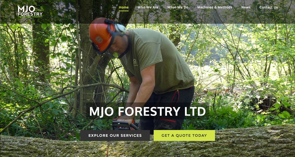 Red Leaf web development Chichester - website refresh for MJO Forestry